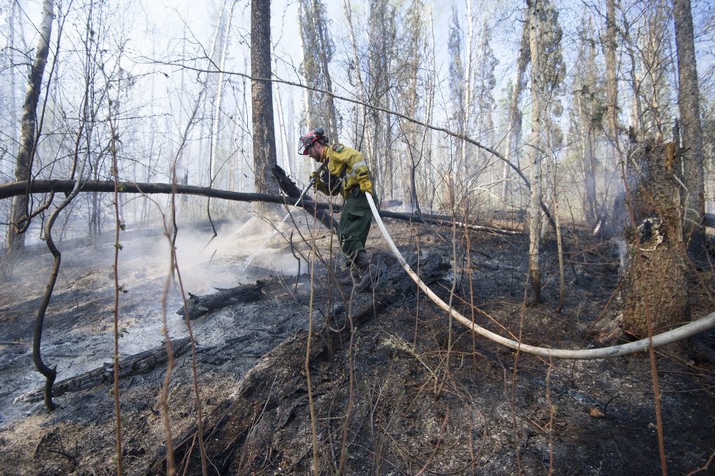 Firefighter putting out flames in forrest near Fort McMurray, Alberta